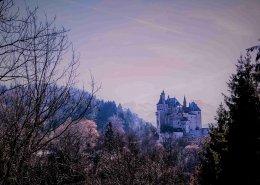 il castello della bella addormentata nel bosco