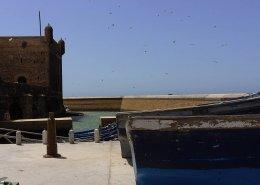 essaouira città di vento: squala de port con barche