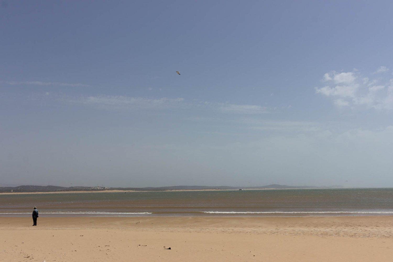essaouira città di vento: spiaggia e oceano con uomo che osserva