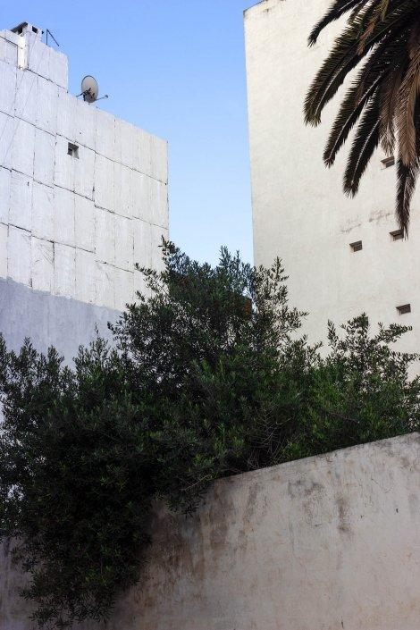 Casablanca : edifici bianchi