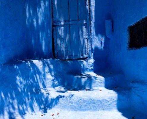 chefchaouen: porta blu, petali rossi sui gradini