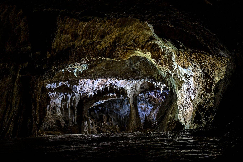 grotta choranche: galleria
